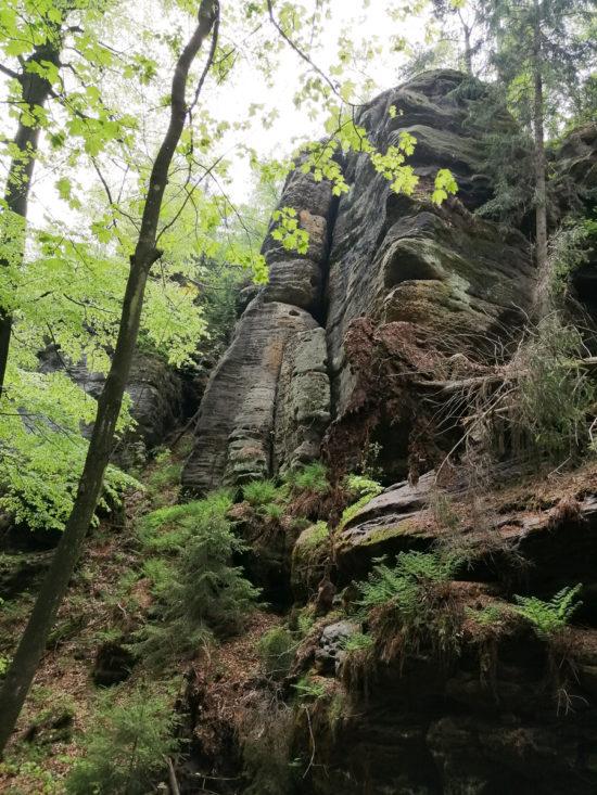 die Sächsische Schweiz - eine wunderbare Felslandschaft